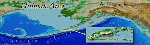 Unimak Island Area in relation to Alaska