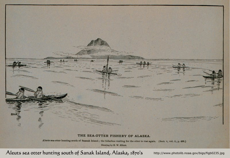 Aleuts hunting sea otter, south of Sanak Island, Alaska