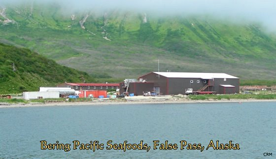 Bering Pacific Seafoods, False Pass, Alaska