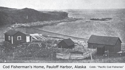 Fisherman's Home, Sanak Island, (Pauloff Harbor), Alaska:  Cobb, ca. 1915