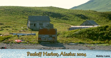 Pauloff Harbor, Alaska: 2004, location of old Codfish Station