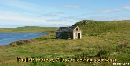 Pauloff Harbor, Sanak Island, Alaska, looking southeast:  2004