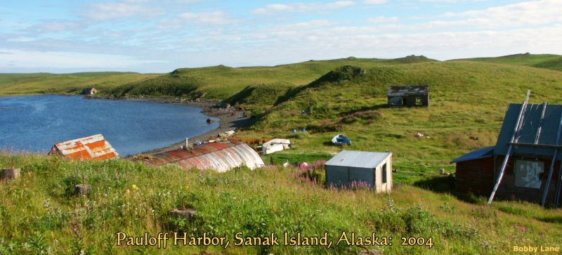 Pauloff Harbor, Sanak Island, Alaska: 2004, Bobby Lane Photo