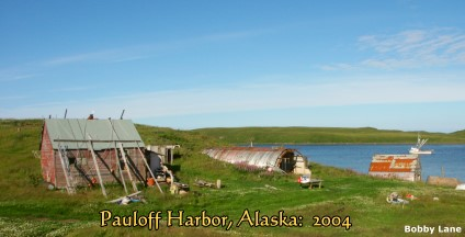 Pauloff Harbor, Alaska: 2004, looking north,  B.Lane Photo