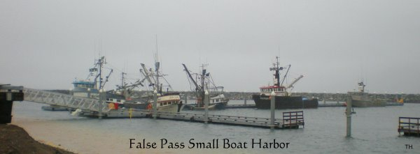 False Pass Small Boat Harbor