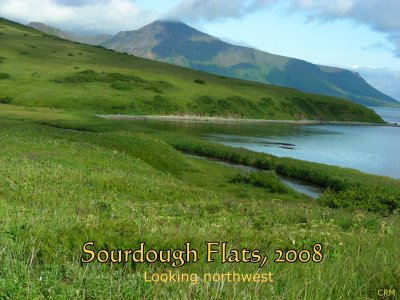 Sourdough Flats, Unimak Island, Alaska, look northwest