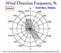 Wind Direction Frequency, Cold Bay, Alaska:  January